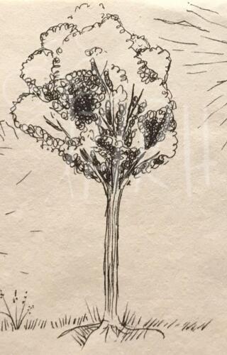 Skitse - Træ