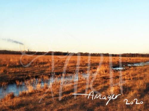 Amager - håndværk og æstetik - et postkort